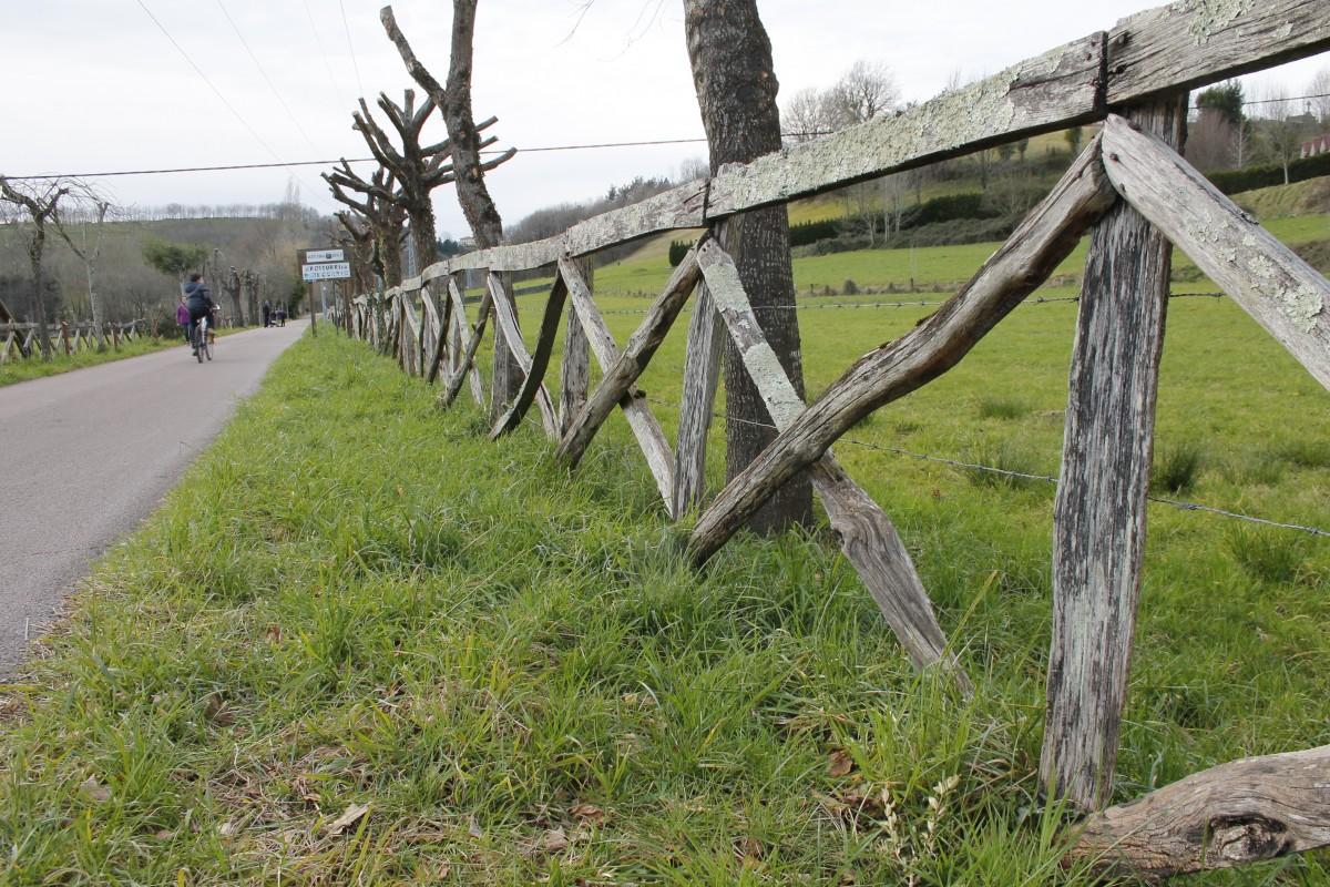 Altzibar-Ugaldetxo arteko bidegorrian argiztapena hobetzeko lanak hasiko dira